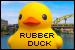 Florentijn Hofman: Rubber Duck